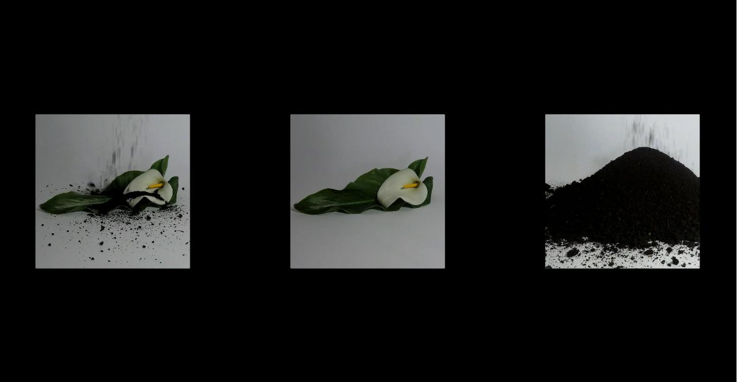 Alfredo Oriti - III anno videoinstallazione
