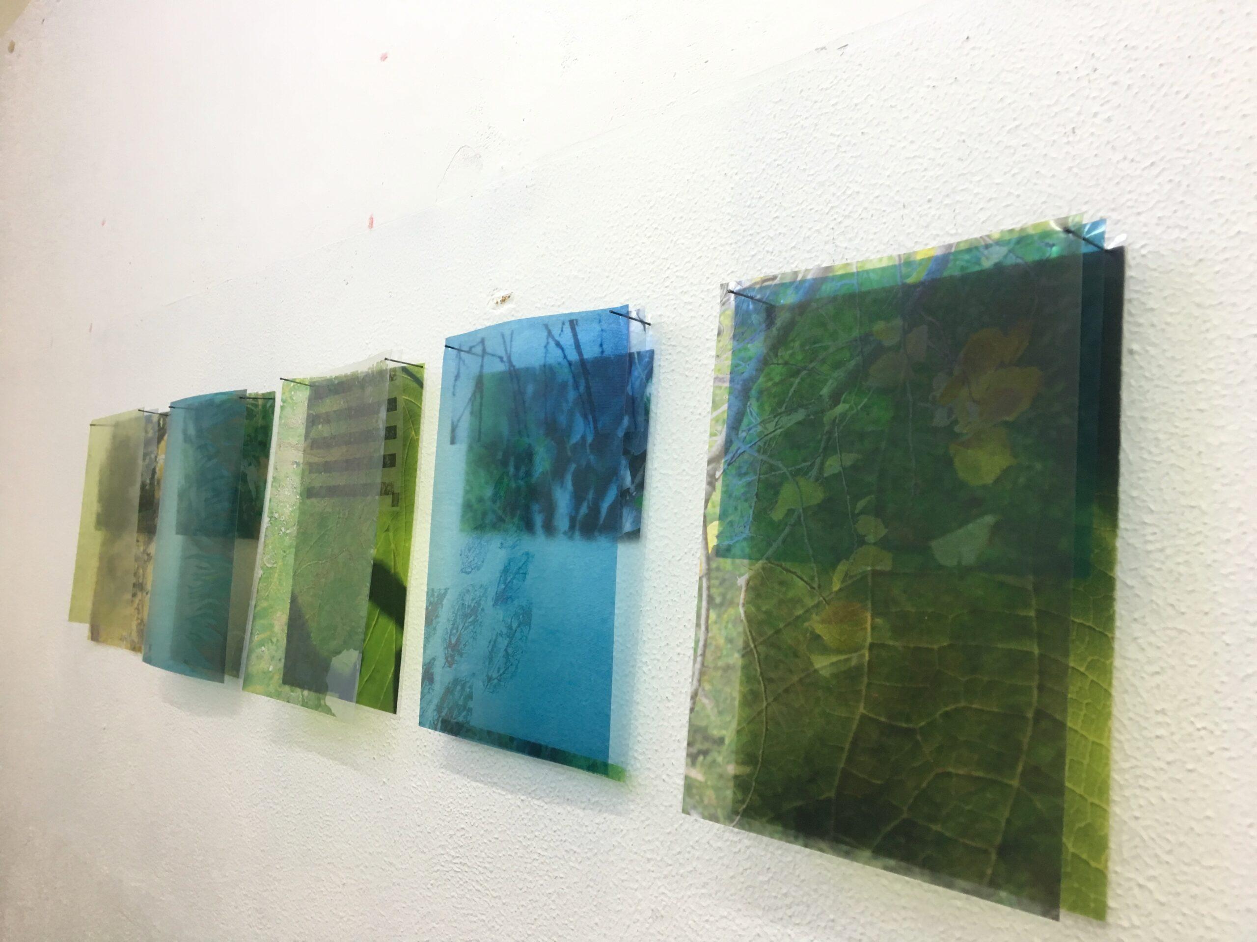 Loriana Quisari III anno Installazione stampe su acetato