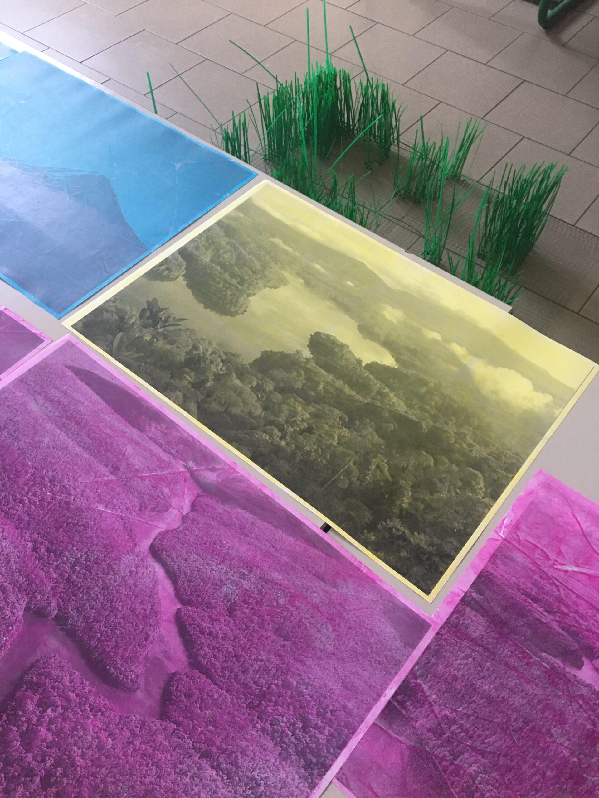 Cristina Agnello - stampe inkjet ed elaborazione pittorica