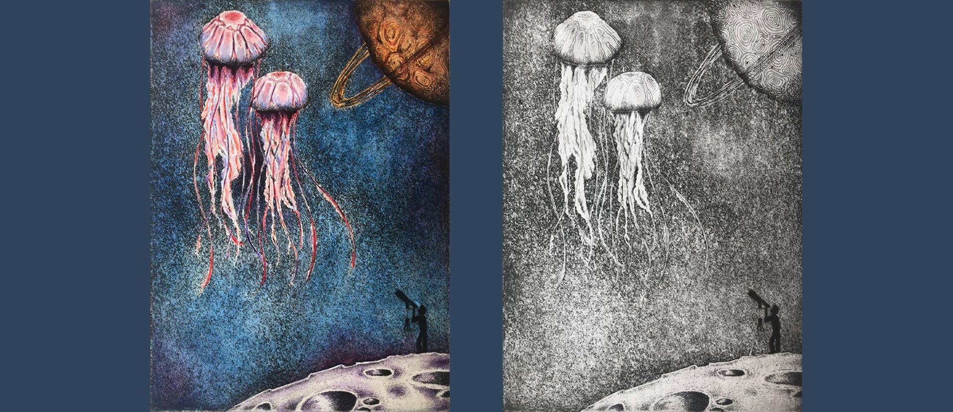 Meduse - Illustrazione