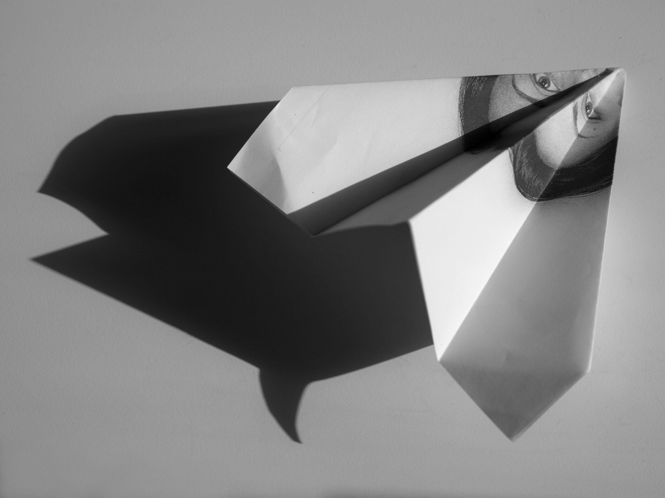 immagine onirica in cui l'ombra di un foglio piegato, prende la forma di una balena